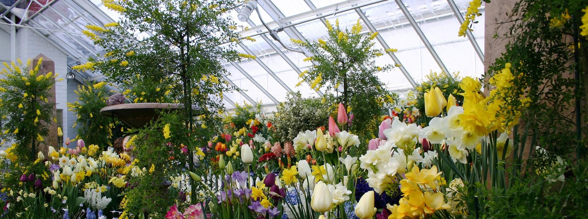 The Official Botanic Garden Of Rutgers: Pagemike@standardsmichigan.com